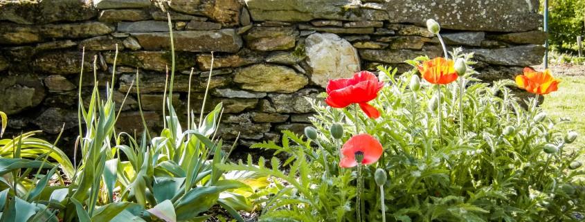 creation-mur-pierre-jardin-nantais
